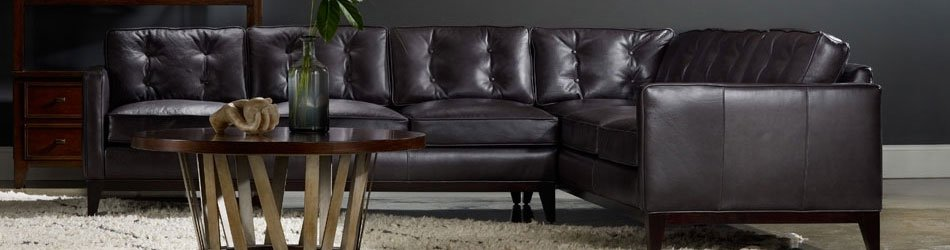 Shop Bradington Young
